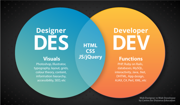 web designer and web developer